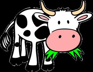 cow-159893_640